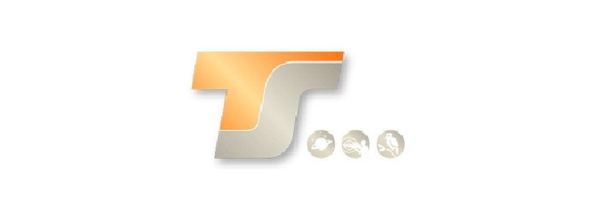 TSOptics